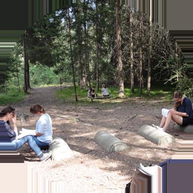 Am Weiterbildungsnachmittag konnten wir uns mit der Anleitung von Ricarda und mit ihren Taktiken auf uns konzentrieren und unsere persönlichen Baustellen eruieren und einen Plan entwickeln, um diese Baustellen anzugehen.